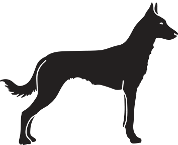 duxroyal - malinois kennel